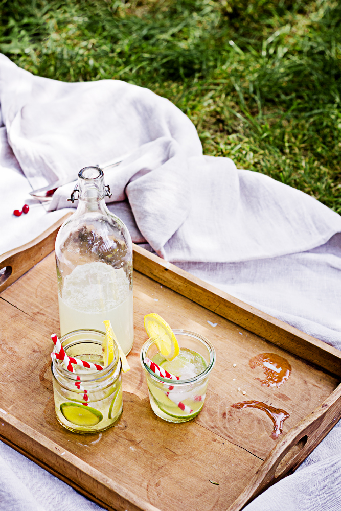 Picknick Limonade 2